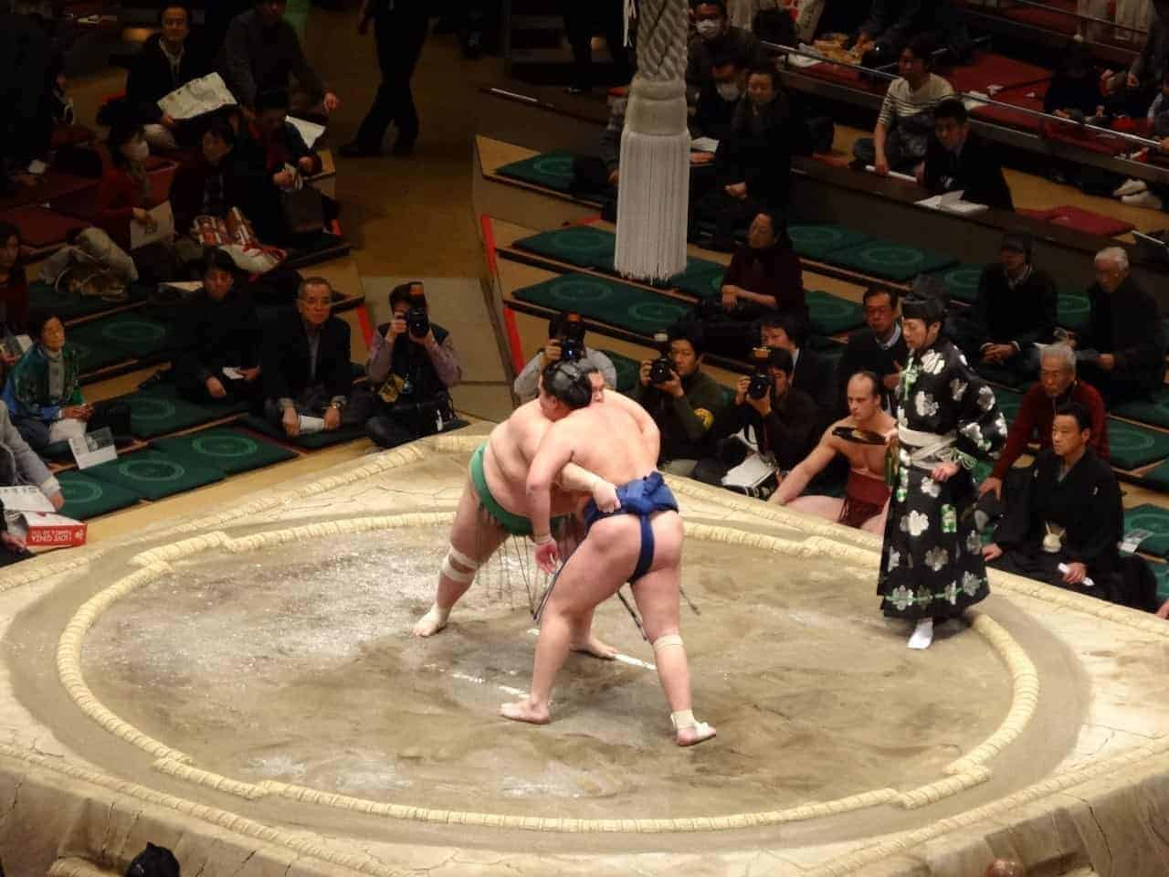 Sumo wrestlers battling it out japan