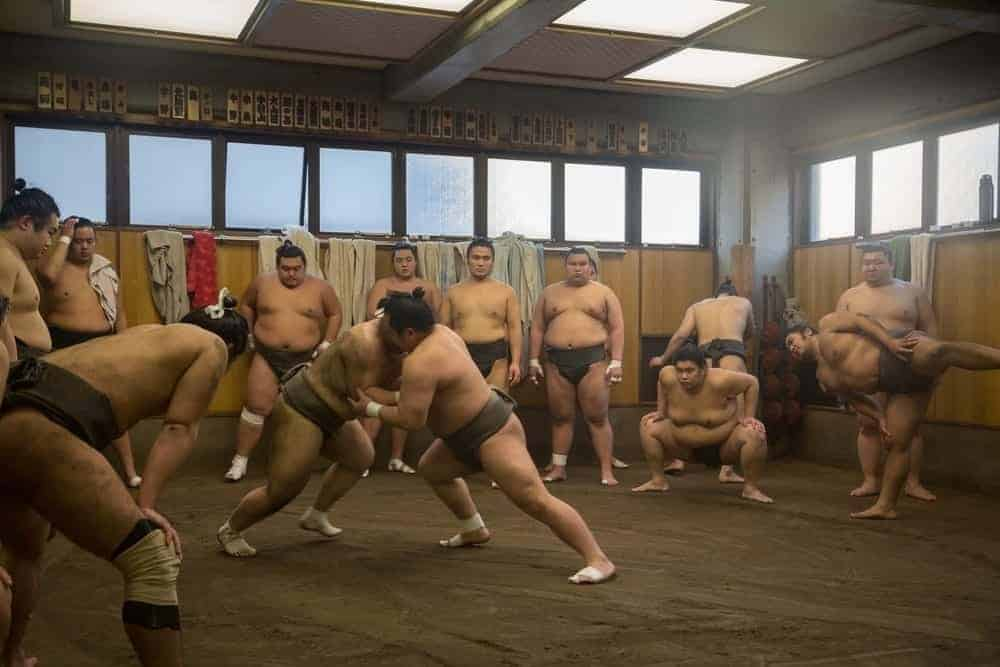 early morning sumo wrestling tokyo bucket list experience