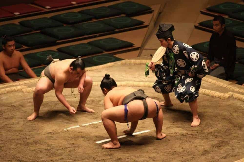 sumo wrestling tournament  tokyo bucket list experience