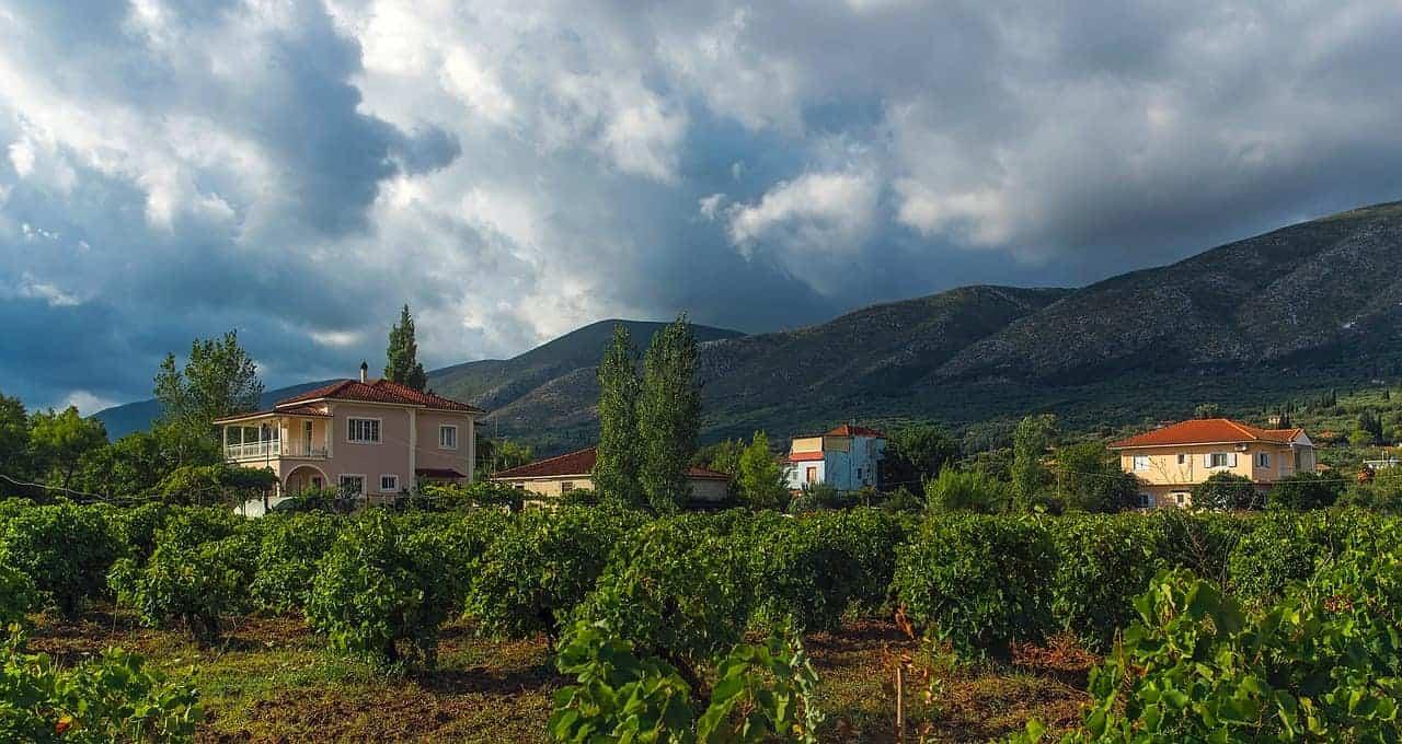 Greek Vineyard European Bucket List